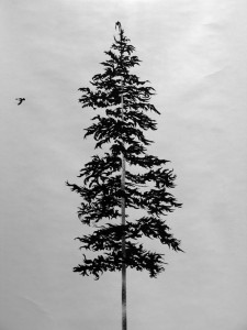 Douglas Fir and Raven detail _small_